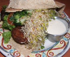 Review of aladdins natural eatery in ithaca ny by ithaca for Aladdin indian cuisine